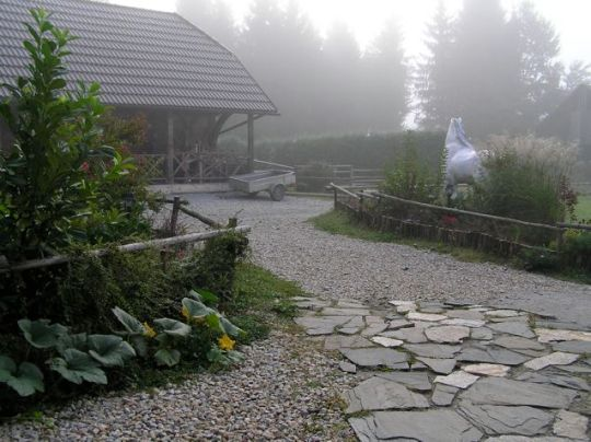 his peaceful morning scene - the stone walkway to the library and the mascot Lippizaner behind the bush take me back to the magical feeling of the new TTEAM/TTouch Center Slovenia at the Kaja & Grom Ranch.