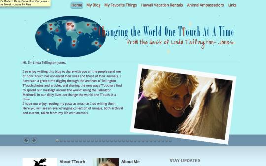 visit TTouchworld.com